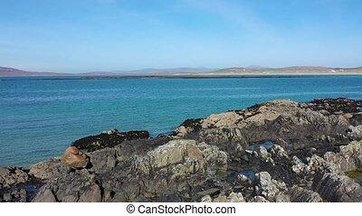 Cashelgolan beach, Castlegoland, by Portnoo in County ...