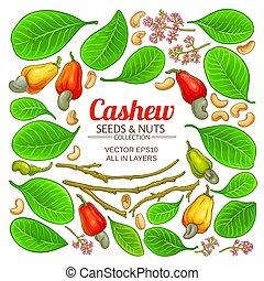 cashew elements set on white background