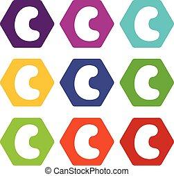 Cashew icon set color hexahedron