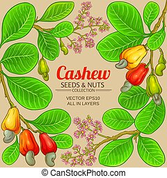 cashew vector frame on color background
