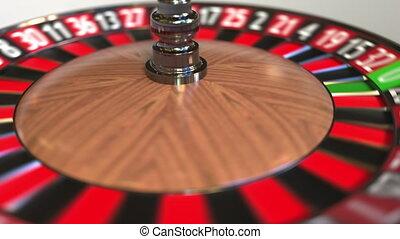 Casino roulette wheel ball hits 24 twenty-four black. 3D...