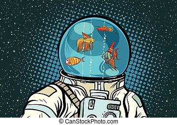 casque, fish, astronaute, aquarium