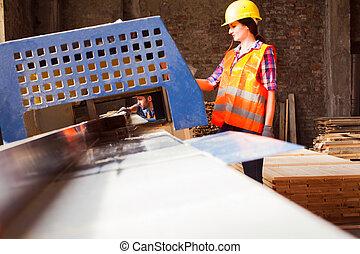 casque, workwoman, workshop., égalité, travail bois, genre, protecteur, concept.