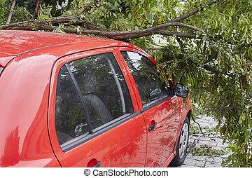cassé, voiture, élevé, vents