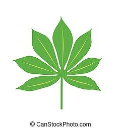 Cassava Plant Leaf, On White Background