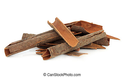 Cassia Bark - Cassia bark cinnamon spice over white...