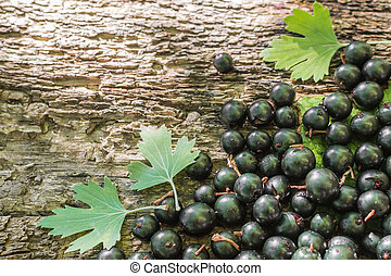 cassis berry on wooden background