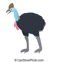 Cassowary Isolated on a white background. Vector graphics.