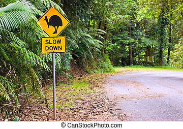 A cassowary road warning sign in the rainforest of north Queensland, Australia