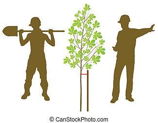 castaño, planta, vector, plano de fondo, con, trabajador, y, jardinero