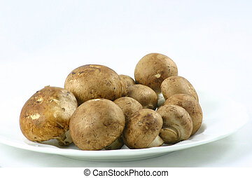 castagna, funghi