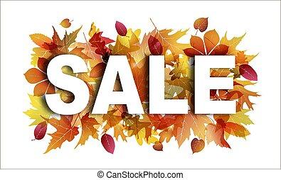 castanha, carvalho, folhas, sycamore, venda, outono, luminoso, foliage., fundo, branca, maple, bandeira