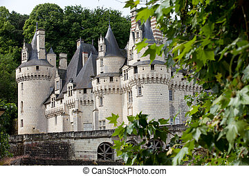 Castel of Rigny-Usse