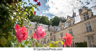 Castel of Rigny-Usse.Loire Valley, France