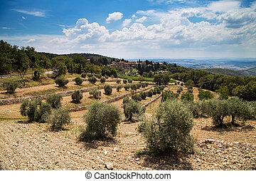 Castellina in chianty
