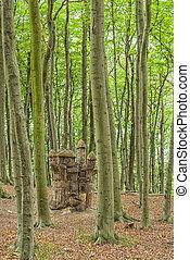 castello, ceppo albero