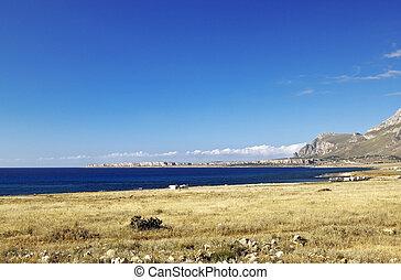 Castelluzzo quater - Castelluzzo coastal zone and Capo san...