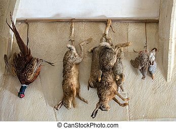 Castelnaud, Dordogne, France - September 7, 2018: Hunting trophies hanging on the kitchen wall in Castelnaud Castle, medieval fortress at Castelnaud-la-Chapelle, Dordogne, Aquitaine, France