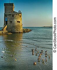castelo, mar