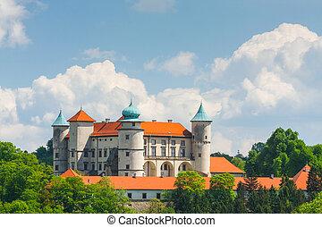 castelo, nowy, vista, polônia, wisnicz