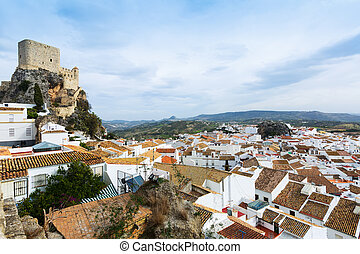 castle at cliff in Olvera