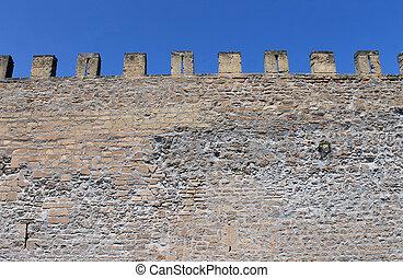 Exterior of medieval castle showing battlements.