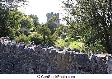 Castle Cork - Cork castle