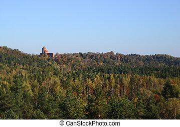 castle far away among the trees