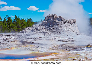 Castle Geyser in Yellowstone National park, USA