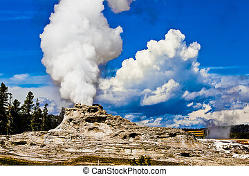 Castle Geyser of Yellowstone National park