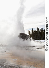 Castle Geyser, Yellowstone NP
