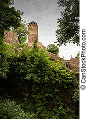 Castle Hasistejn