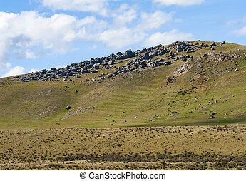 Castle Hill highland area in the New Zealand