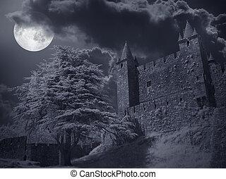 Castle in a full moon night