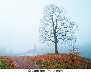 Castle in the autumn fog. Gatchina. Russia.