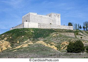 Castle Monzon de Campos