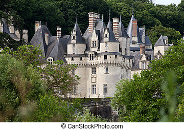 Castle of Rigny-Usse