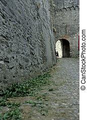 castle-, rhinetal, deutschland