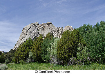 Castle Rock Above the Trees