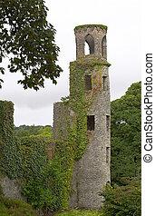 Castle ruins in Blarney, Ireland