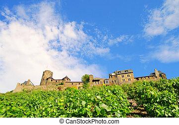 Castle Thurant 02