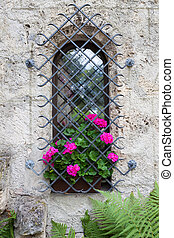 Small castle window and vivid pink flowers
