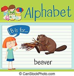 castor, b, letra, flashcard