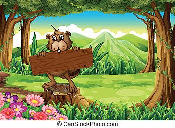 castor, enseigne, vide, tenue, forêt