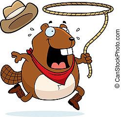 castor, rodeo