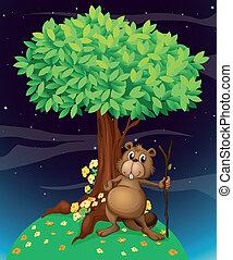 castor, sous, arbre, grand