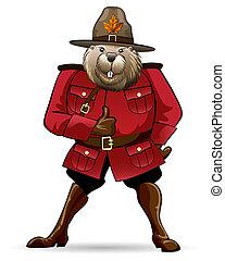 castoro, guardia forestale, canadese, completo