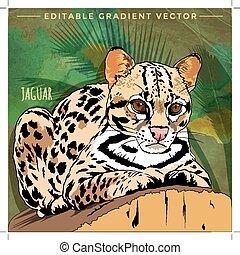 Wild cats in the habitat. Jaguar in ambush