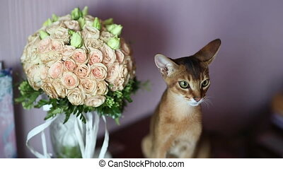 Cat and Bouquet - cat sits near a wedding bouquet
