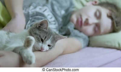 cat and boy teenager sleeping together indoors friendship...